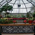Anna Scripps Whitcomb Conservatory by Randy J Heath