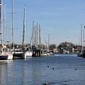Annapolis - Harbor View by Ronald Reid