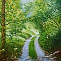 Annecy Forest Afternoon by Dai Wynn