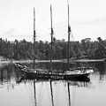 Three-masted Schoonerannie F. Case, Bangor, Maine Circa 1900 by California Views Archives Mr Pat Hathaway Archives