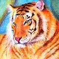 Ano Do Tigre by Fernanda Cruz
