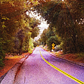 Another Bend In The Road by Glenn McCarthy Art and Photography