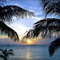Another Key West Sunset by Joan  Minchak