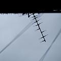 Antenna by Kam Chuen Dung