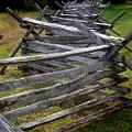 Antietam Fenceline by Judi Quelland