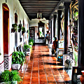 Antigua Hall by Anthony C Chen