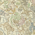 Antique Celestial Map by Carel Allard