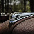 Antique Hood Ornament by Kim Hojnacki