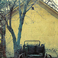 Antique Manure Spreader At Wheeler Farm by David King