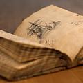 Sailors Notebook by Raelene Goddard