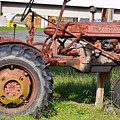 Antique Tractor by Kim Bemis