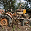 Antique Tractor by Yo Pedro