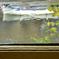 Antique Window - Amsterdam by Pamela Newcomb