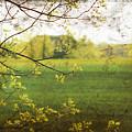 Antiqued Grunge Landscape by Sandra Cunningham