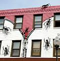 Ants At Zipperhead by Noel Baebler