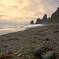 Anxiety Morning On The Ocean Shore. by Vladimir Serebryanskiy