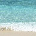 Anyone For A Swim by Jessica Estrada