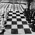 Anyone For Chess by Debbie Oppermann
