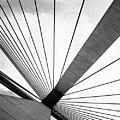 Anzac Bridge by Elizabeth McPhee