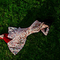 Ao Dai Lying On The Grass by Tran Minh Quan