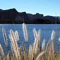 Apache Lake Superstition Mountains by NaturesPix