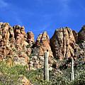 Apache Trail by Chuck Wedemeier