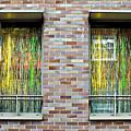 Apartment Window by Tom Gowanlock