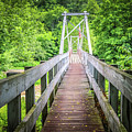 Appalachian Bridge by Dana Foreman