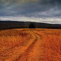 Appalachian Trail Heading North In Pa Section 7 by Raymond Salani III