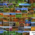 Appalachian Trail Pennsylvania by Raymond Salani III