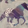 Appaloosa Dreams by Candace Shrope