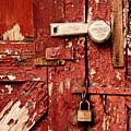 Appealing Barn Door by Valerie Morrison