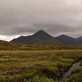 Appealing Scenic Landscacpe In Cuillen Hills Scotland  by DejaVu Designs