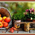 Apple Basket And Other Objects Still Life L B With Alt. Decorative Ornate Printed Frame. by Gert J Rheeders