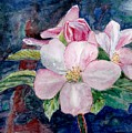 Apple Blossom - Painting by Veronica Rickard