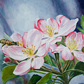 Apple Blossoms With Honeybee by Karl Wagner