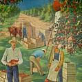 Apple Industry by Mountain Dreams