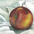 Apple Portrait by Sandy Clift
