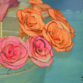 Apple Roses by Traci Cottingham
