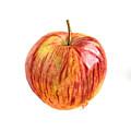 Apple by Swati Singh
