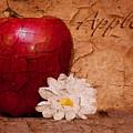 Apple With Daisy by Tom Mc Nemar