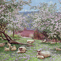 Appleblossom by William Biscombe Gardner