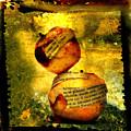 Apples by Bernard Jaubert