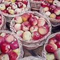 Apples by Constance Drescher