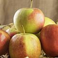 Apples In Basket by Julie Woodhouse