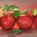 Apples by Lori Deiter