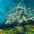 Appletree In Spring by Pol Ledent