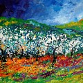Appletrees 4509070 by Pol Ledent