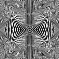 Apprehensions by Douglas Christian Larsen