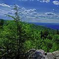 Approaching Little Gap On The Appalachian Trail In Pa by Raymond Salani III